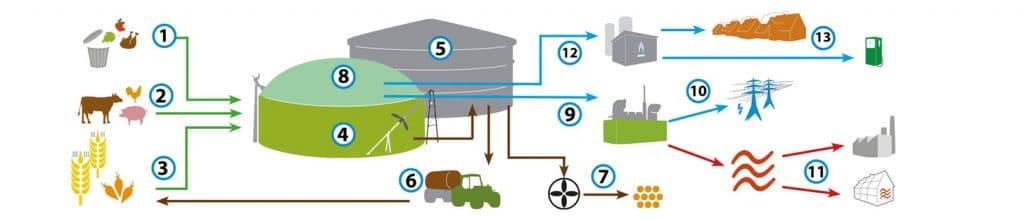Schéma présentant le processus de transformation des substrats organiques en biogaz