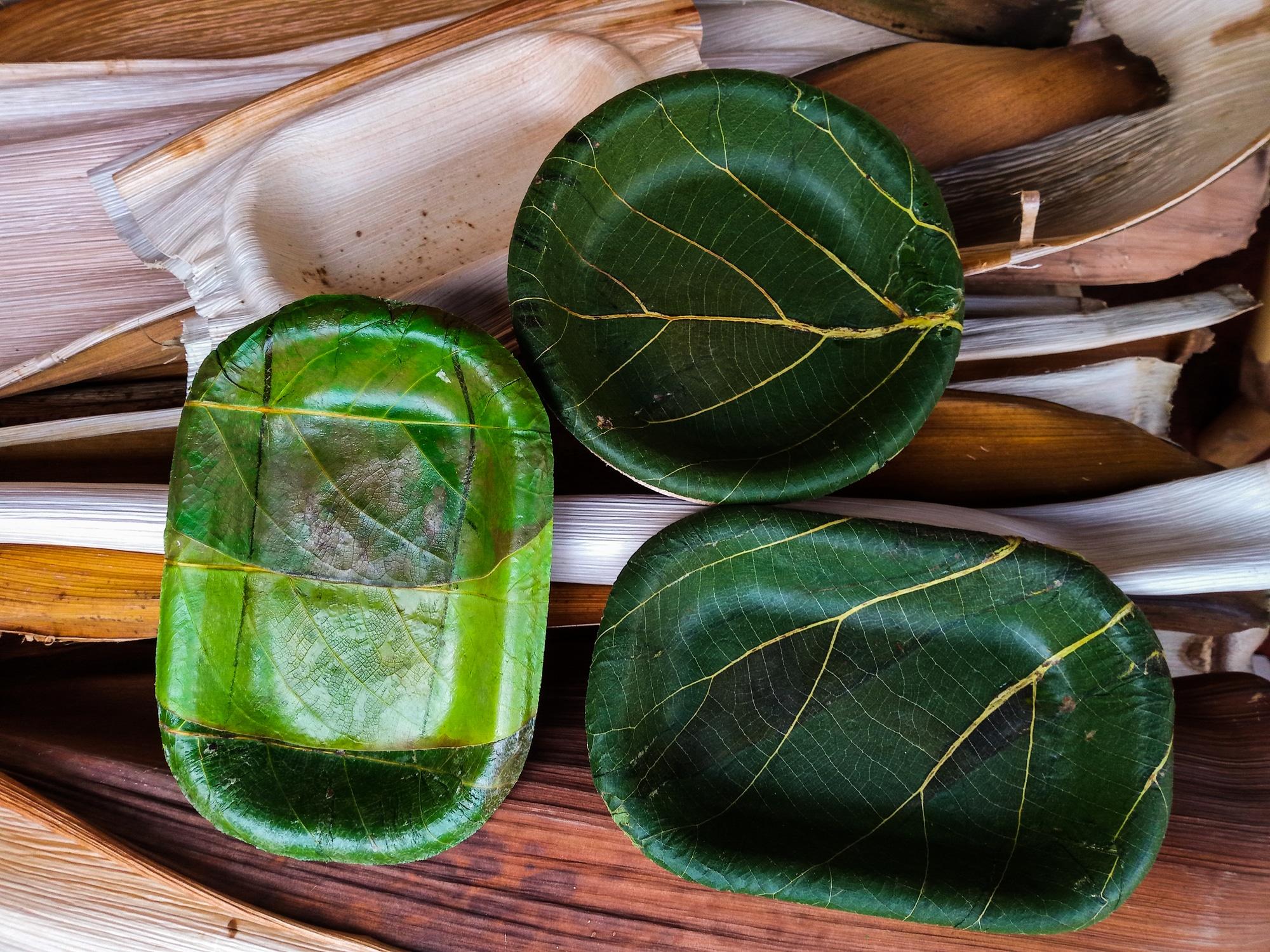 Assiettes en feuilles naturelles biodégradables et compostables